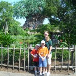 kids animal kingdom